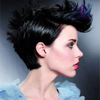 Short Cut 2010