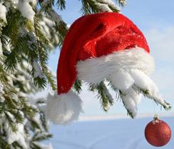 weihnachtsbaum selber schlagen hier wird euch geholfen. Black Bedroom Furniture Sets. Home Design Ideas