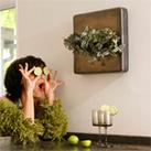 Flowerbox - Minigärten an der Wand