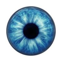 Gezieltes Augentraining